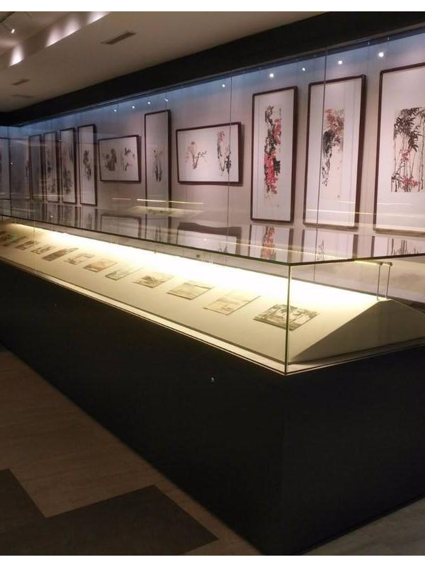 收藏品金属展示柜